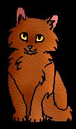 Рябинка (котенок)