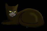 Стремительный Конь (кот горного клана)