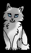 Тучка (котёнок)