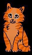 Подберёзовик (котёнок)