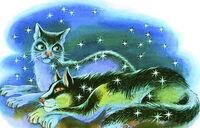 Синяя Звезда и Звёздный Луч Закон племён