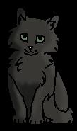 Дымопят (котёнок)