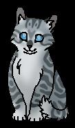 Воробьишка (котёнок)