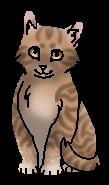 Листвичка (котёнок)