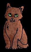 Пестролап (котёнок)