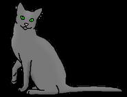 Вьюнозвёзд (звёздный предок)