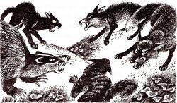 Полночь лисы и коты Восход луны
