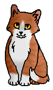 Колючка (котенок)