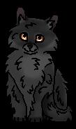 Щербатая котенок