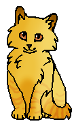 Заря (котёнок)