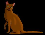 Рыжегривка 3