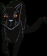 Чёрный Коготь Тень в РП