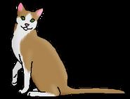 Зерношкур (звёздный предок)