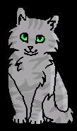 Полынь (котёнок)