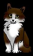 Пихточка (котёнок)