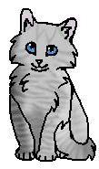 Булыжничек (котенок)