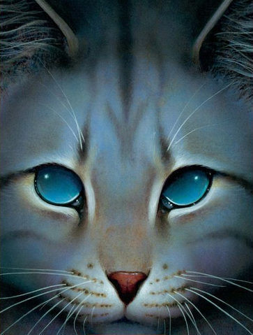 File:Jayfeather.png