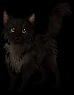 Agnar.kitten