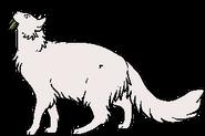 Medicine Cat.lh