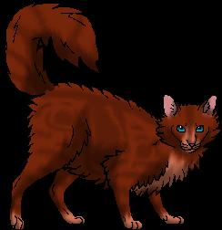 Wolfstorm.warrior