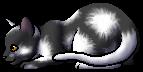 White Tail.kit