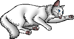 File:Cloudtail.kittypet.png