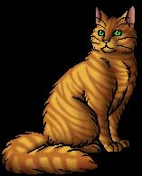 Tigerstar (AVoS).warrior.alt
