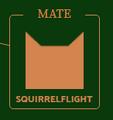Squirrelflight.Icon2