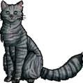 Jayfeather2.0.personal.png