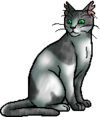 Ivypool.warrior.alt3.png