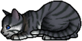 Feathertail.kit.alt