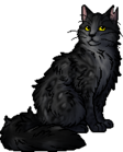 Graystripe.warrior.alt