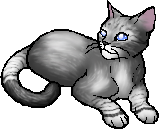 File:InfinityCat personal.png