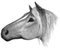 Horse.FG-1