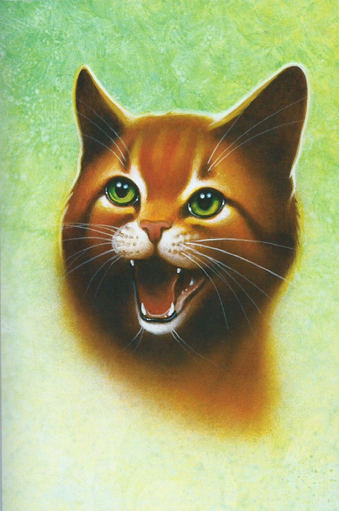 Firestar/Main article | Warriors Wiki | FANDOM powered by Wikia