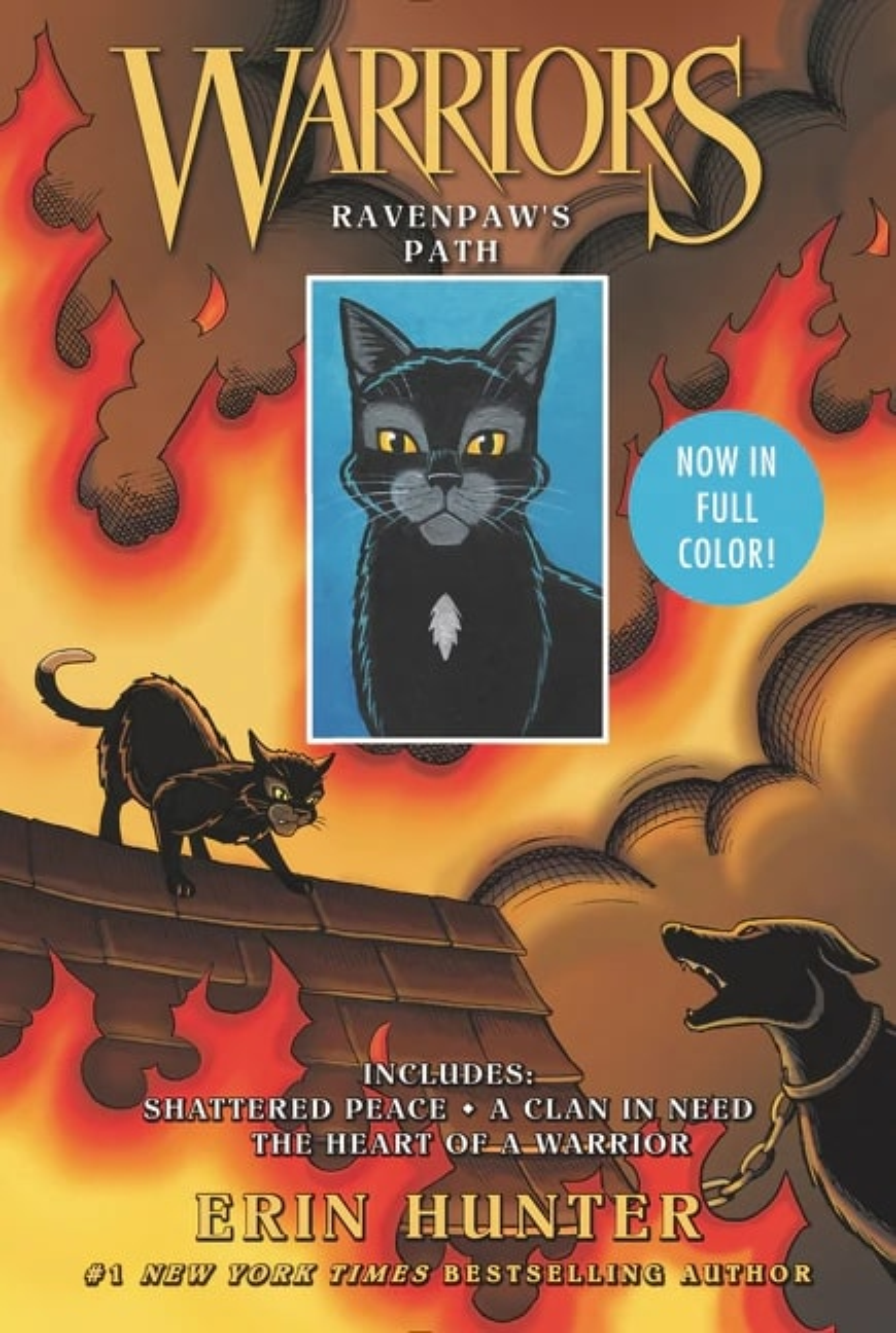Ravenpaw's Path (book)