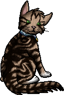 File:Polly.kittypet.png