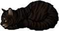 Tigerstar (AVoS).kit