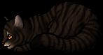 Tigerstar (AVoS).kit