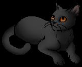 Owlstar (SotC)