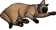 File:Tyr.kittypet.png