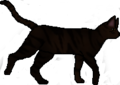 Thumbnail for version as of 11:52, November 9, 2011