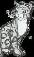 Leopardstar.GA-3