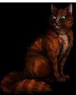 Foxnose