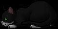 Molepaw (TNP).kit