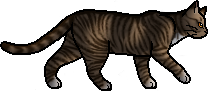 Leafpool.loner