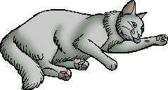 File:Plumwillow.kittypet.alt.png