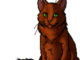 Squirrelflight/Main article