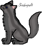 File:Shadowpelt.png
