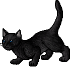 File:Crowfeather.apprentice.png
